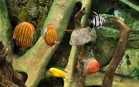 MyLake 3D Aquarium 5