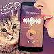 Translator for cats Simulator (game)