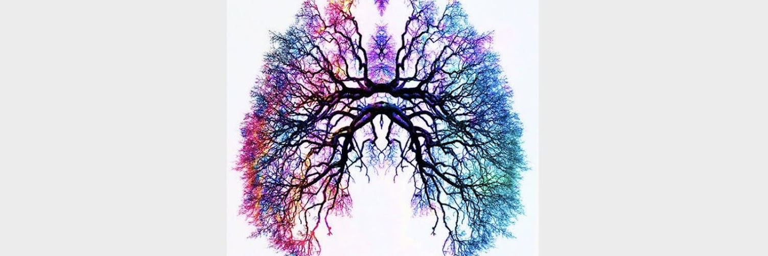 The Respiratory System Healing