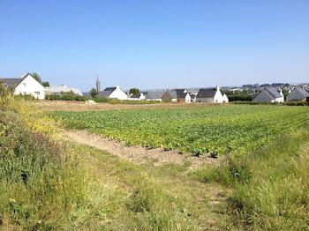 terrain à Saint-Pol-de-Léon (29)