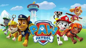 PAW Patrol thumbnail