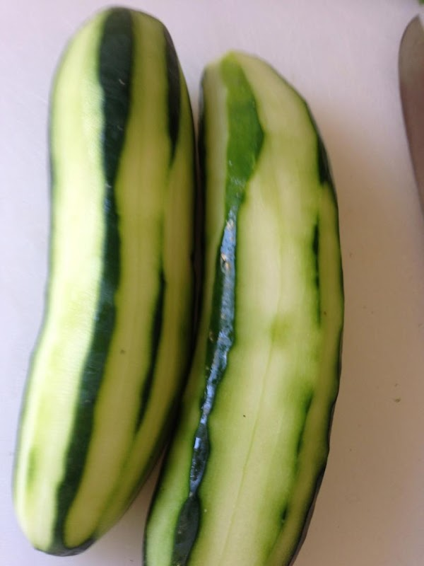 When I was pregnant I had the worst time after eating cucumbers with them...
