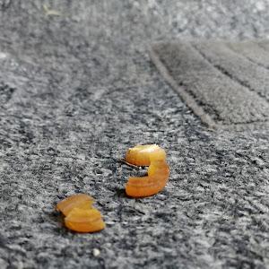サニー B15 VZ-Rのカスタム事例画像 餅さんの2020年04月17日21:43の投稿