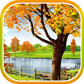 Autumn Pond Live Wallpaper