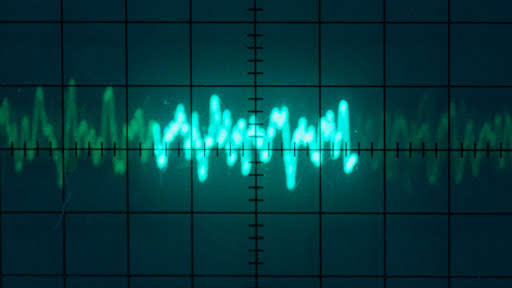 A waveform of a whale call