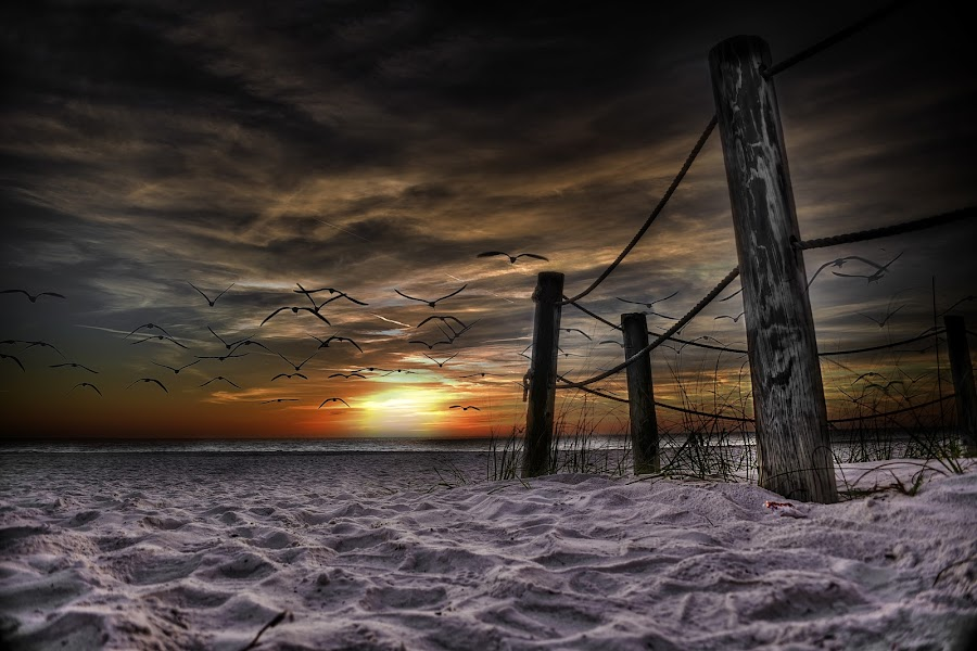 by Terry Kindy - Landscapes Beaches