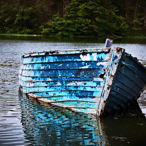 Boat on the Lake by Oona Tully - Landscapes Waterscapes ( boat lake )