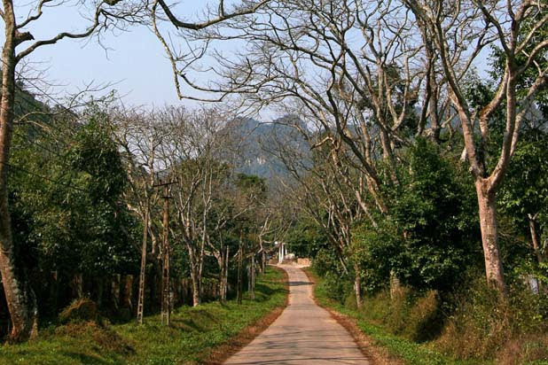 Hiking in Cuc Phuong
