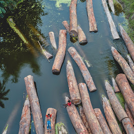Models by (͡° ͜ʖ ͡ °) - Abstract Patterns ( play, woods, vertical, trunk, bangladesh, trees, water, kids )