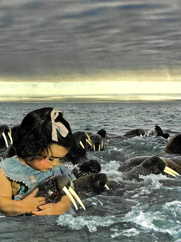 kid with walruses