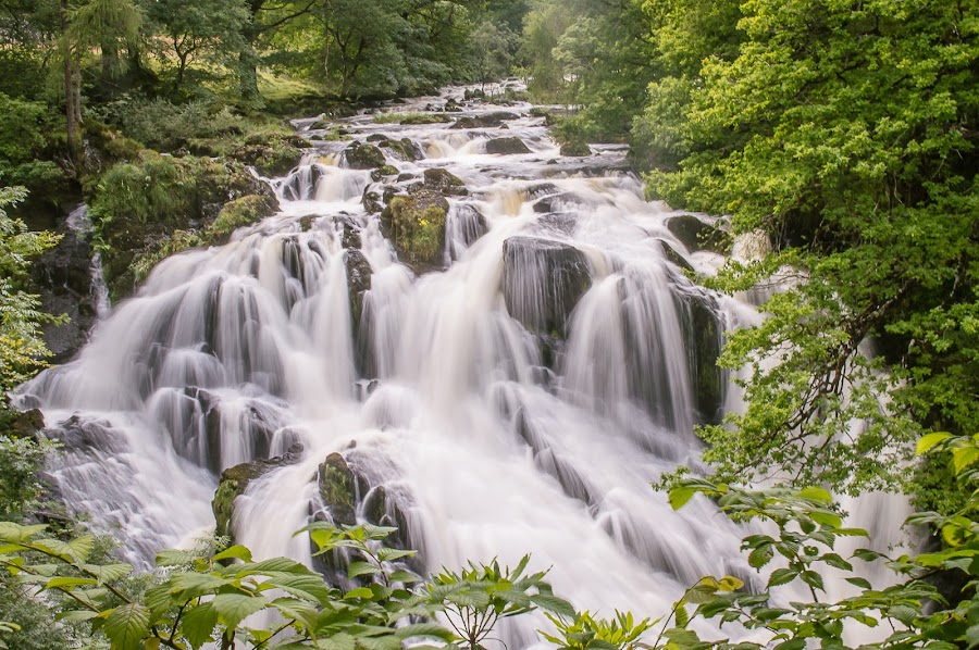 Swallow Falls by Nicole Williams - Landscapes Waterscapes ( countryside, water, scape, waterfall )