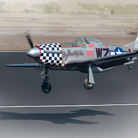 P-51 Landing by Fred Prince - Transportation Airplanes ( maloof, wwii, albuquerque, fighter, p-51 )