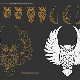 Creative Process behind Ginc. Creative's Owl by Dennis Nieling - Illustration Cartoons & Characters ( process, logo, smooth, creative, mib, wings, mason, owl, line, feathers, linework, design )