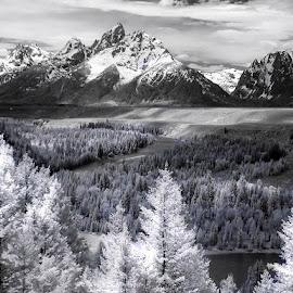 Classic Tetons by Ken Smith - Black & White Landscapes ( black and white, snake river, landscape, grand tetons )