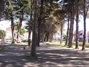 Photo: 9B262335 Chile - Punta Arenas