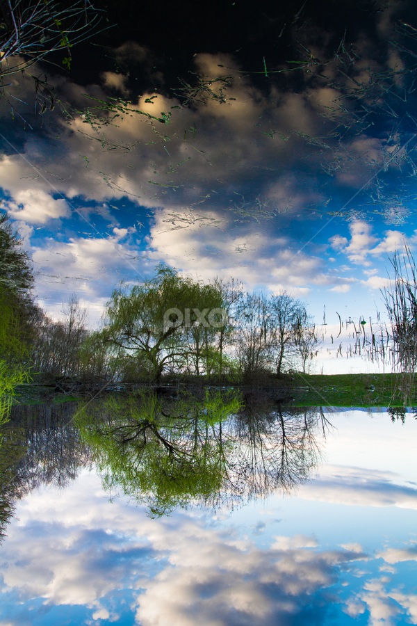 Mirroring by Diaconu Daniel - Landscapes Waterscapes ( mirror, water, sky, blue, green, lake, spring )