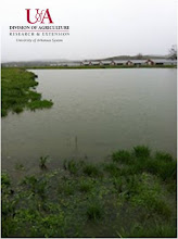 Photo: Flooded conditions on pasture (spring 2012)