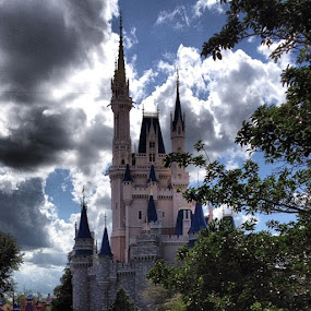What a view for lunch! :) #disney #magickingdom by Tyler Landgraf - Instagram & Mobile Instagram