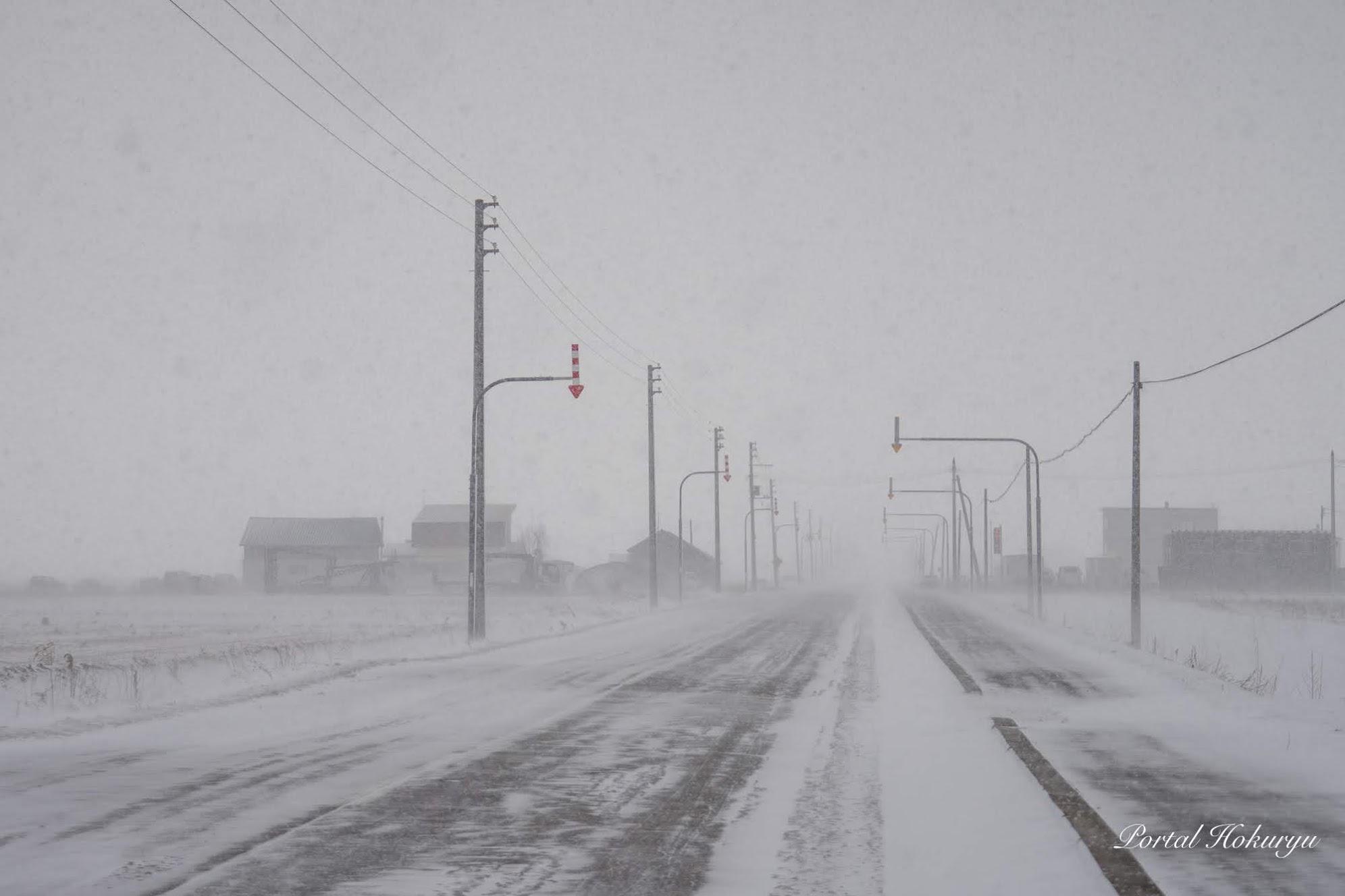 吹雪舞う道路