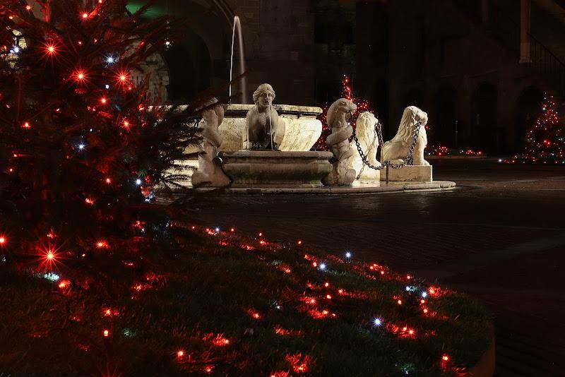 Natale in Piazza di Gizeta-93