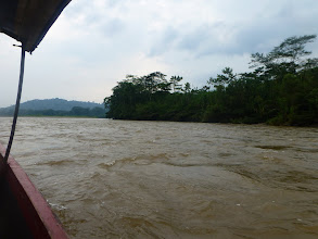 Photo: On the Napo River