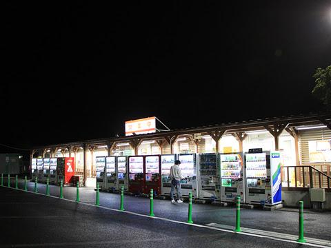 東北急行バス「ニュースター号」夜行便 ・834 国見SA