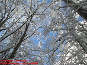 Photo: IMG_9919 sul 615 bianco e azzurro