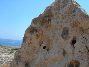 Photo: Fossilien bei Cape Greko