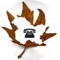 Dial Kashmir icon