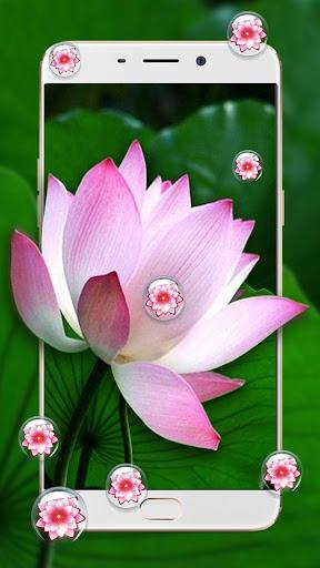 Pink Lotus Theme