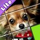 SlideLite - SlidePuzzle about dog, cat, cactus...