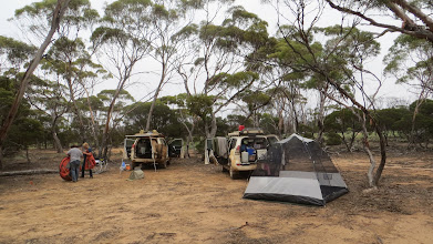 Photo: Camp along the old telegraph track