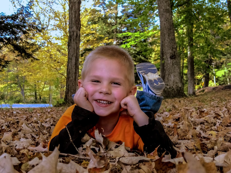 boy in leaves by William Hayes - Novices Only Portraits & People ( park, amateur, fun, boy, portrait )