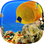 Aquarium Live Wallpaper 🐟 Fish Tank Background