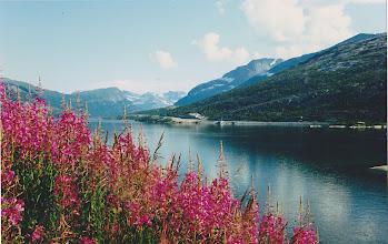 Photo: Beautiful Norway