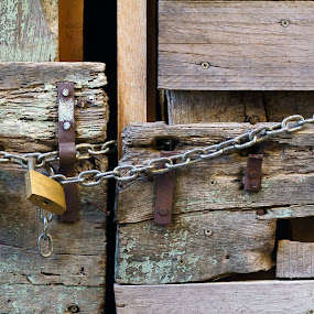 chain by Riccardo Lazzari - Abstract Patterns ( pattern, wood, chain, lock, door,  )