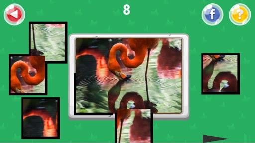 Xếp hình động vật screenshot 3