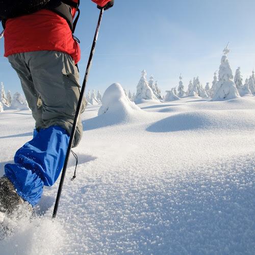 Schneeschuh-Wanderung im Schwarzwald