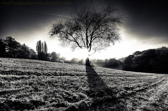 Photo: I wish all of you a good day and here is the lonley tree in bw.  Made this #hdr by 5 photos. Processed in #photomatix , #lightroom4 and #silverefex   Calendar? This way -> http://www.meinbildkalender.de//galerie.cfm?sesid=&shopid=861182 Prints? This way -> http://markuslandsmann.zenfolio.com/...  #fotoamateur by me +Remo Primatesta +Karsten Meyer +Scotti van Palm #bwlandscapewednesday by +Victor Bezrukov +Manuel Votta +Margaret Tompkins +Charles Lupica +BWLandscape +Monochrome Arty Club #monochromeartyclub  +10000 PHOTOGRAPHERS around the World by +Robert SKREINER +Walter Soestbergen #10000photographersaroundtheworld  +HQSP Landscape by +Delcour Eric +Ara MO #hqsplandscape  +HQSP Monochrome by +Blake Harrold +Bill Wood #hqspmonochrome  #europeanphotography #europeanphoto +European Photo +Landscape Photography #landscapephotography by +Margaret Tompkins +Carra Riley +paul t beard +David Heath Williams +Bill Wood +HDR Photographers +Wide Angle Wednesday +Asif Patel #wideanglewednesday #wowwednesday  #plusphotoextract #photoextractplus #exposedphoto