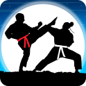 Karate Fighter : Real battles icon