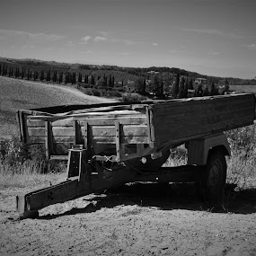 Old worker by Cosimo Resti - Transportation Other ( agriculture, rust, old, black and white, cart )
