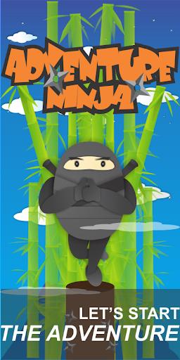 Adventure Ninja