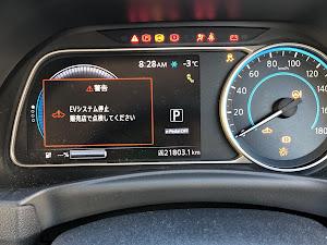 リーフ ZE1のカスタム事例画像 KotaSAkuさんの2020年02月07日08:59の投稿