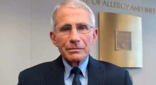 Fauci admits Wuhan lab received 'modest' funds from US amid calls for probe into Covid origins