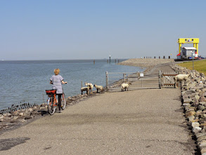 Photo: Anleger auf Nordstrand nach Pellworm