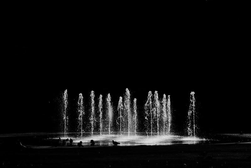 Flussi..... di luce di paolomole