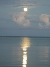 Photo: Mad River Outfitters- Andros Island Trips for Bonefish