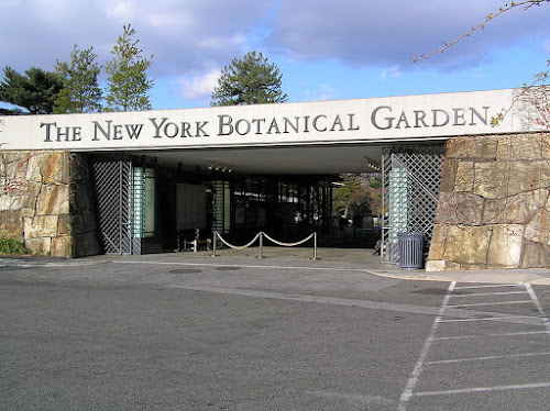 Photo Jardin botanique de New York