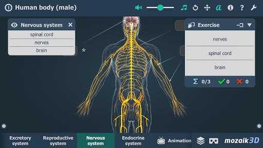 Human body (male) educational VR 3D 1.19 screenshots 5