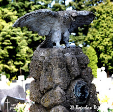 Photo: Cmentarz św. Franciszka w Łodzi. Orzeł z rozwartymi skrzydłami, wznoszący się do lotu - symbolizujący duszę dążącą do Boga, wieńczący obeliskowy pomnik nad grobem Anatoliusza Zenona Jaworskiego. Zobacz także >>> https://picasaweb.google.com/boguslawster/CmentarzStaryWOdziCzescEwangelicka#5200976177230886706